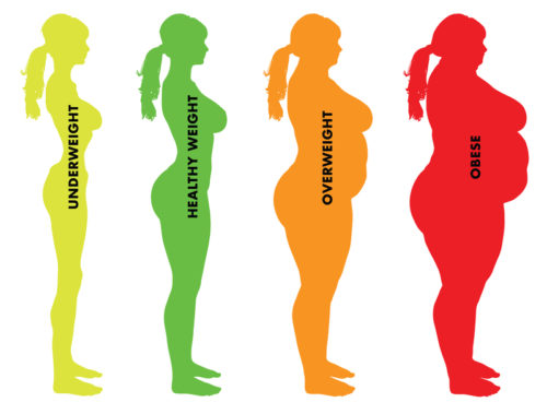 Will My Weight Bmi Affect A Life Insurance Application